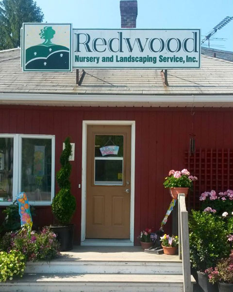 potted and hanging plants, Redwood Nursery – Potted and Hanging Plants in Swansea, MA, Redwood Nursery & Garden Center
