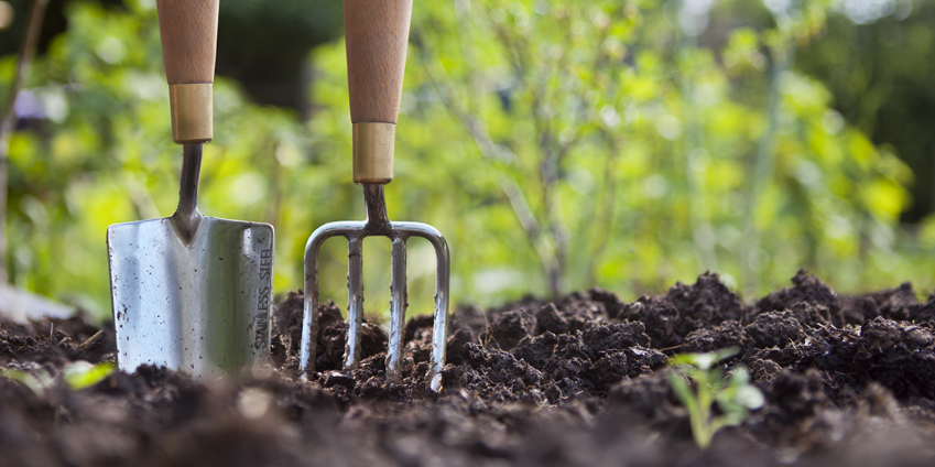 , How to Care for Garden Tools, Redwood Nursery & Garden Center