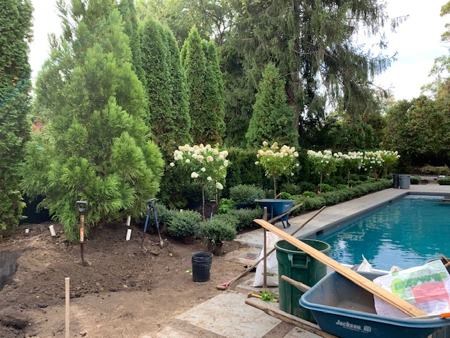 landscaping, Landscaping, Redwood Nursery & Garden Center