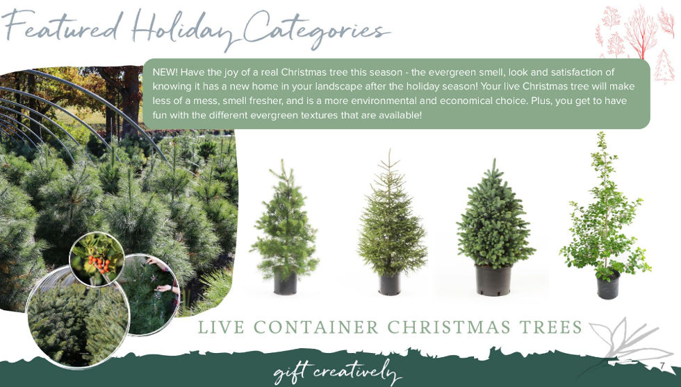 , Holiday Gifts from Bower & Branch, Redwood Nursery & Garden Center