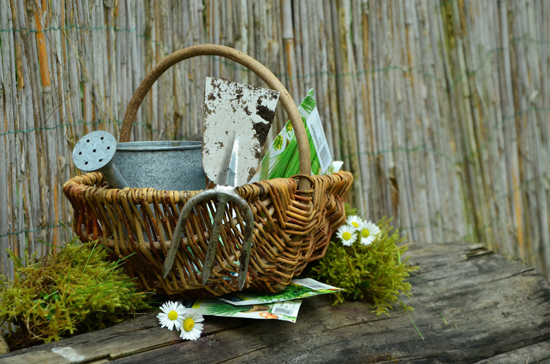 , Give the Gift of Gardening, Redwood Nursery & Garden Center