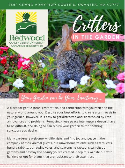 , Critters in the Garden, Redwood Nursery & Garden Center